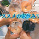 夏におススメの家飲みワイン3選+1【コスパ良し】