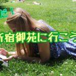 新宿御苑へ行こう!【家族でも、デートでも、一人でも♪】