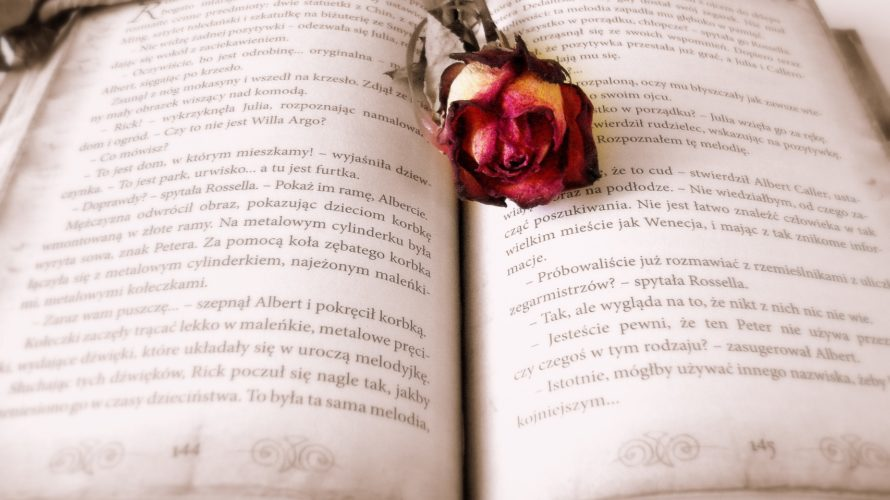 Kindle Paperwhiteの使い心地【電子書籍デビューで買うならこの一択】